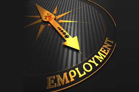 Employment for Businesses Link