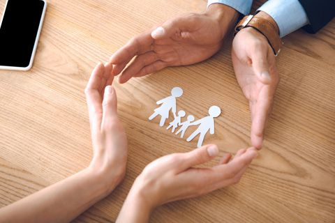 Family Law Link